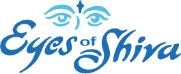 Eyes of Shiva - Gutter Cleaning in Boulder, CO